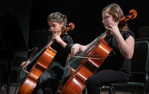 2 young cellist